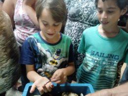 Sustentabilidade Ambiental é trabalhada com famílias do Roos III