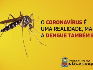 Aproveite a quarentena para proteger sua casa do Aedes Aegypti
